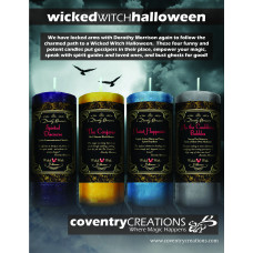 Halloween Wicked Witch Mojo Sign Point of Purchase