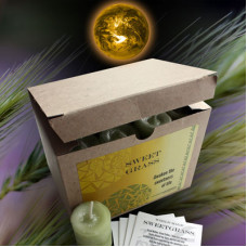 Sweet Grass World Magic Votives (Box of 24)