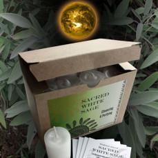 Sacred White Sage World Magic Votives (Box of 24)