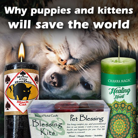 HM why puppies and kittens will save the world